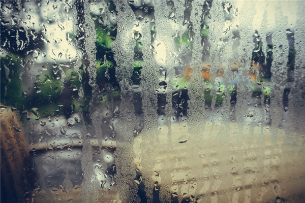 Is Condensation a Sign That You Need New Windows?