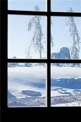 Windows Frozen Shut? Slow And Steady Wins The Race