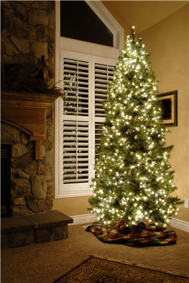 Give the Gift of New Windows This Holiday Season