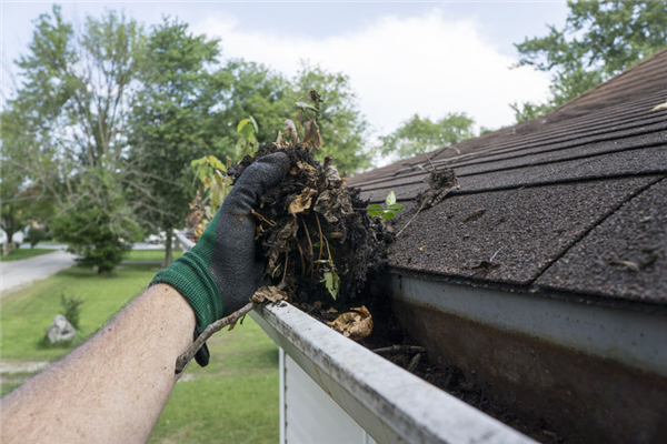 Spring Cleaning for Your Gutters